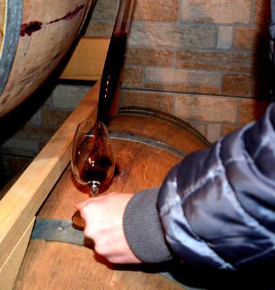 Cantina vendita e degustazione vini Parma